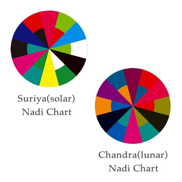 Nadi Chart