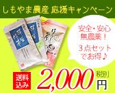 mid_banner8_201506shimoyama