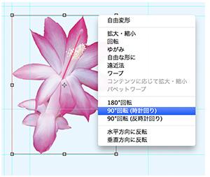 sinzui-rotating