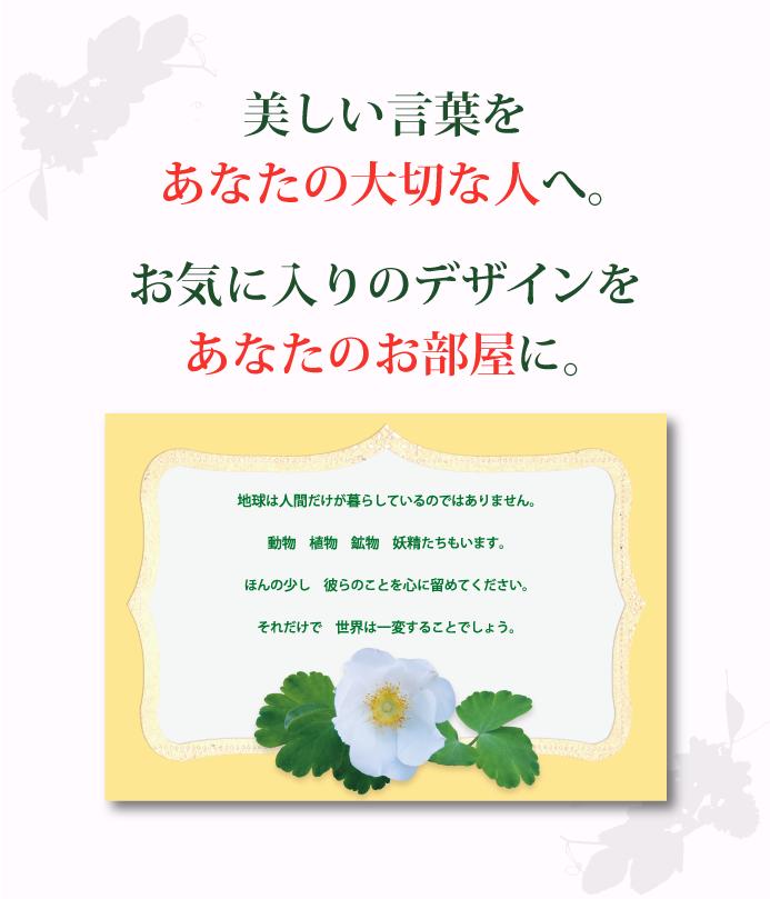 postcard07