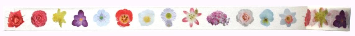 パータの季節のお花のマステロング