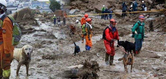 広島の土砂災害で怪我にもひるまず活躍する救助犬たち