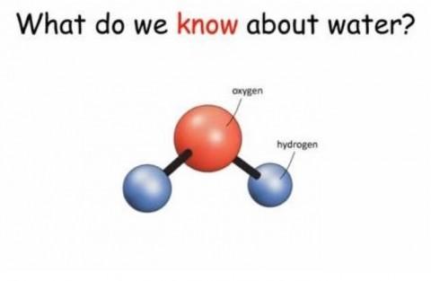 《水について何を私達は分っているのか?》