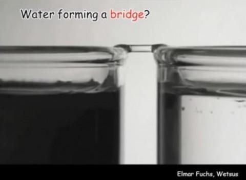 《水が橋を作る?》