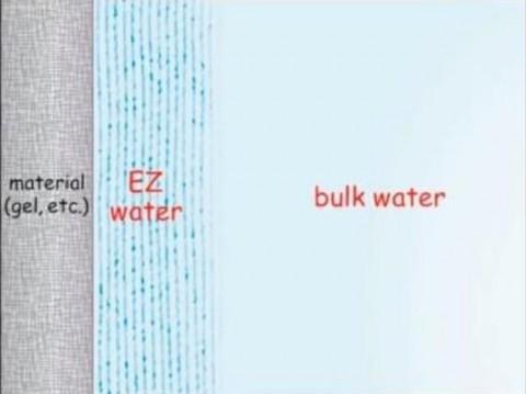 《物質(ゲルなど)、EZ水、自由水》