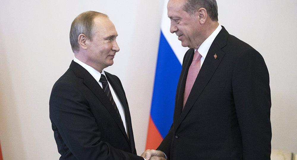ロシアはトルコ企業に対する制限を段階的に撤廃する方針-プーチン大統領 © Sputnik/ Sergey Guneev