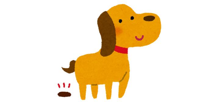 犬のうんこ