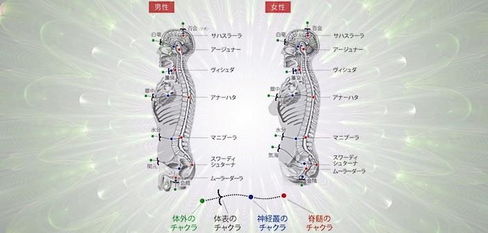 「奇経八脈の走行」の順序と完全に一致している内丹術の基本的階梯!